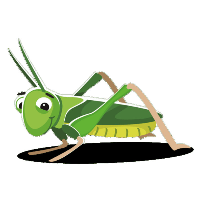 Ray Page Cricket